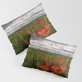 Brighten the Day - Indian Paintbrush Wildflowers in Eastern Oklahoma Pillow Sham