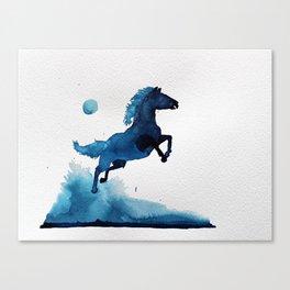 Equus ferus caballus Canvas Print