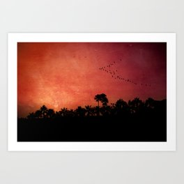 Beautiful silhouette in sunset Art Print