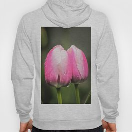 Together we are strong Hoody