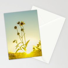 Sunlit Flowers  Stationery Cards