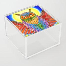 Colorful Rainbow Owl Acrylic Box