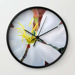 Birdcage Evening Primrose Wall Clock