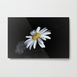 Minimalist Daisy Metal Print