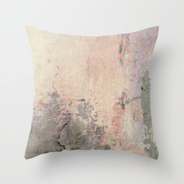 Old World Wall Plaster Throw Pillow