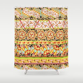 Gypsy Caravan Luxe Stripe Shower Curtain