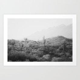 Wild West II - Black & White Version Art Print