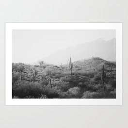 Wild West II - Black & White Version Art Print