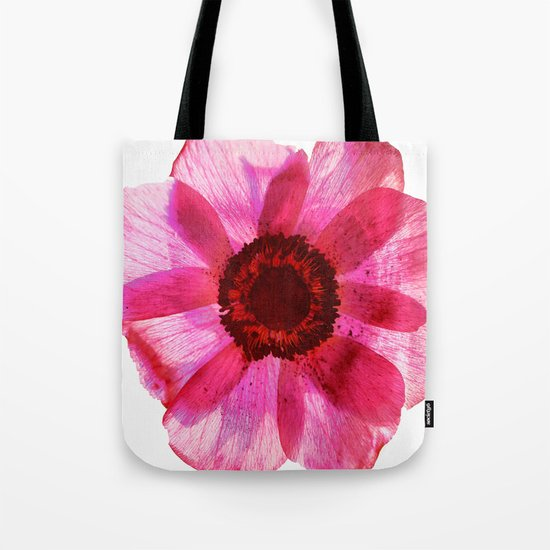 Fragile and beautiful - red anemone in white background Tote Bag