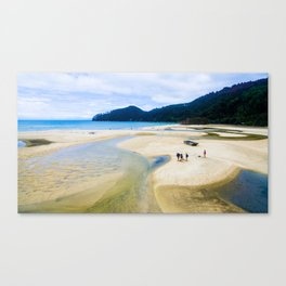 able tasman natural reserve sand low tide walk panorama Canvas Print