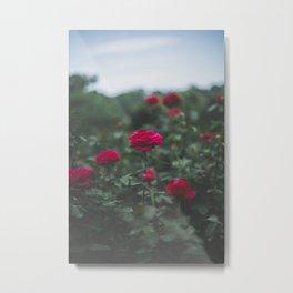 Moody Florals, No. 4 Metal Print