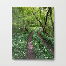 Wild Garlic Road Metal Print