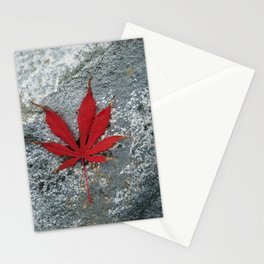 Japanese maple leaf on Rock Stationery Cards