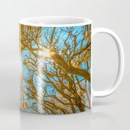 Morning Glory  Photography Coffee Mug