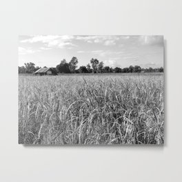 Field And Cottage Metal Print