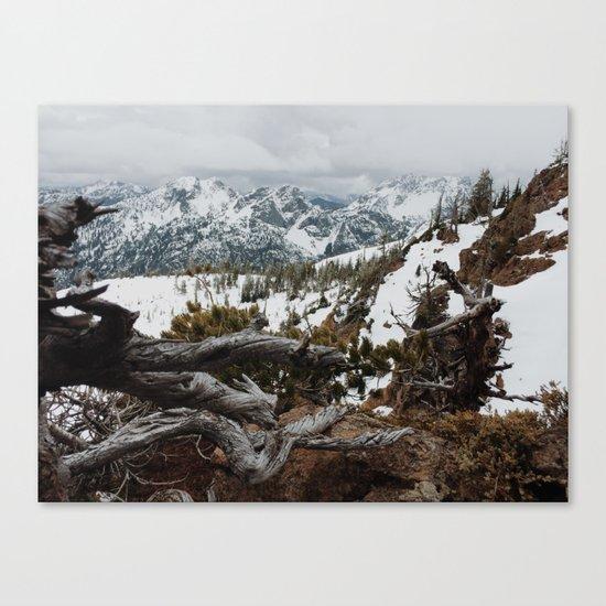 Wenatchee National Forest Canvas Print