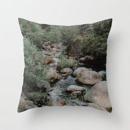 kaweah river Throw Pillow