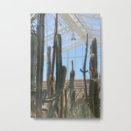 Cactus Glasshouse, greenhouse party with the cacti Metal Print