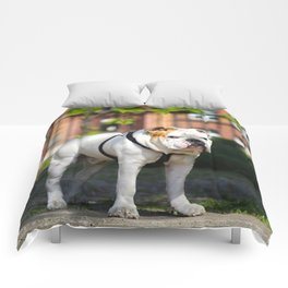 No Entry - Bulldog #decor #homedecor Comforters