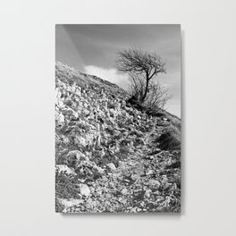 Along the trail, Mount Saint Vicino, Italy Metal Print
