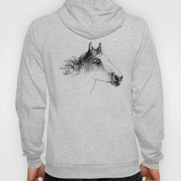 Horse, animal head portrait, hand drawn black and white drawing Hoody