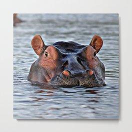 Big hippopotamus Metal Print