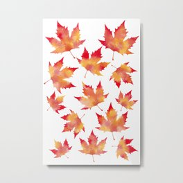 Maple leaves white Metal Print