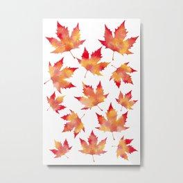 Maple leaves white Metal Print