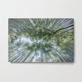Looking up the Bamboo Trees and the Sky Metal Print