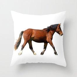 Fine Art Horse Painting  Throw Pillow