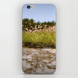 Koster's flowers iPhone Skin