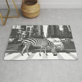Black and White Zebra in NYC Rug