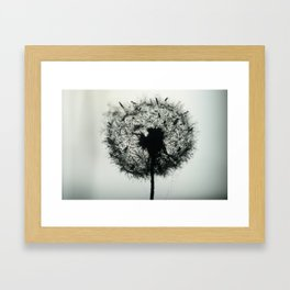 Dandelion Birds photographic Framed Art Print