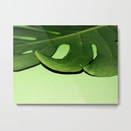 Green with Envy Monstera Metal Print