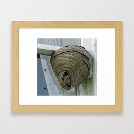 Hornets Nest Framed Art Print