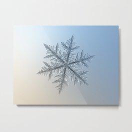 Real snowflake macro photo - Silverware Metal Print