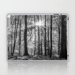 Beech Wood Sunrise Laptop & iPad Skin