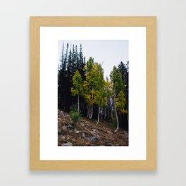 Quaking Framed Art Print