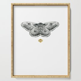 Perseverance - Moth Graphite Drawing by Brooke Figer Serving Tray