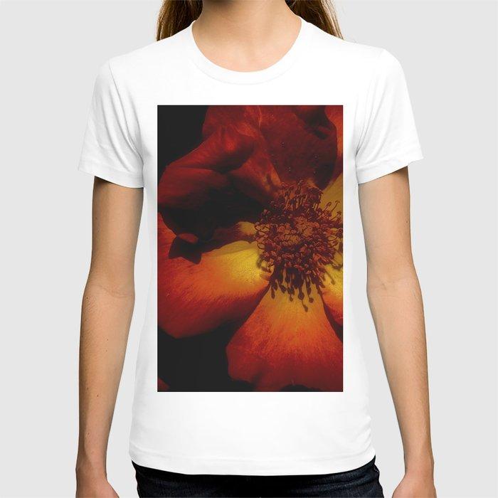 Tawny Autumn Roses T-shirt