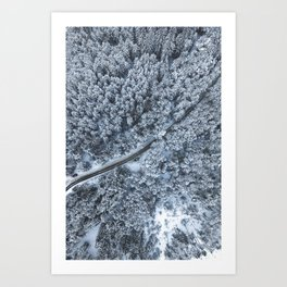 Snow Forest Printable, White Forest Digital Print, Winter Forest Poster, Winter Snow Wall Art, Fores Art Print