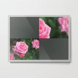 Pink Roses in Anzures 1 Blank Q6F0 Metal Print
