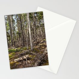 acadian woods Stationery Cards