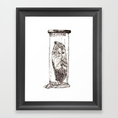 Frogmouth Framed Art Print