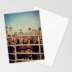 Ostrich Farm Stationery Cards