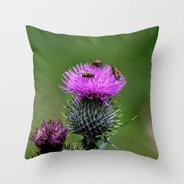 Flower of Scotland Throw Pillow