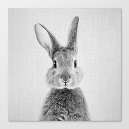 Rabbit - Black & White Canvas Print