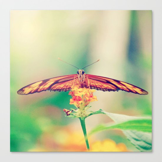 Butterfly retro Canvas Print