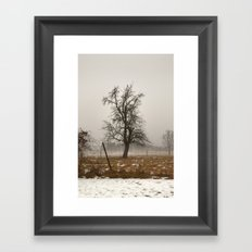 Tree Stands Tall Framed Art Print