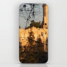 Stav iPhone & iPod Skin